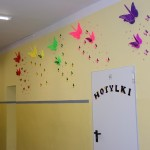 Motylki 29
