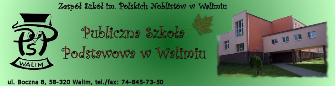 Publiczna Szkoła Podstawowa w Walimiu.